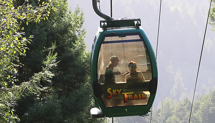 SkyTrail Moving