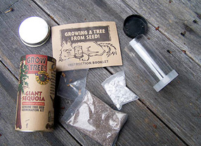 Sierra Seeds Growing Kit